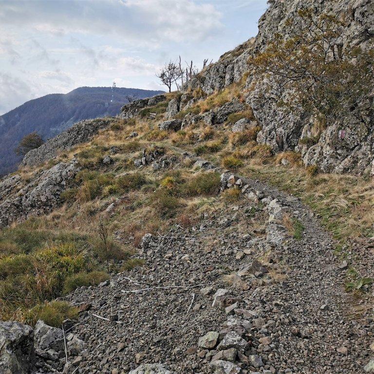 Sentiero verso Monte Beni