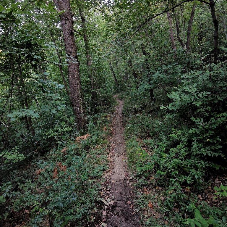 5 valli, sentiero nel contrafforte pliocenico