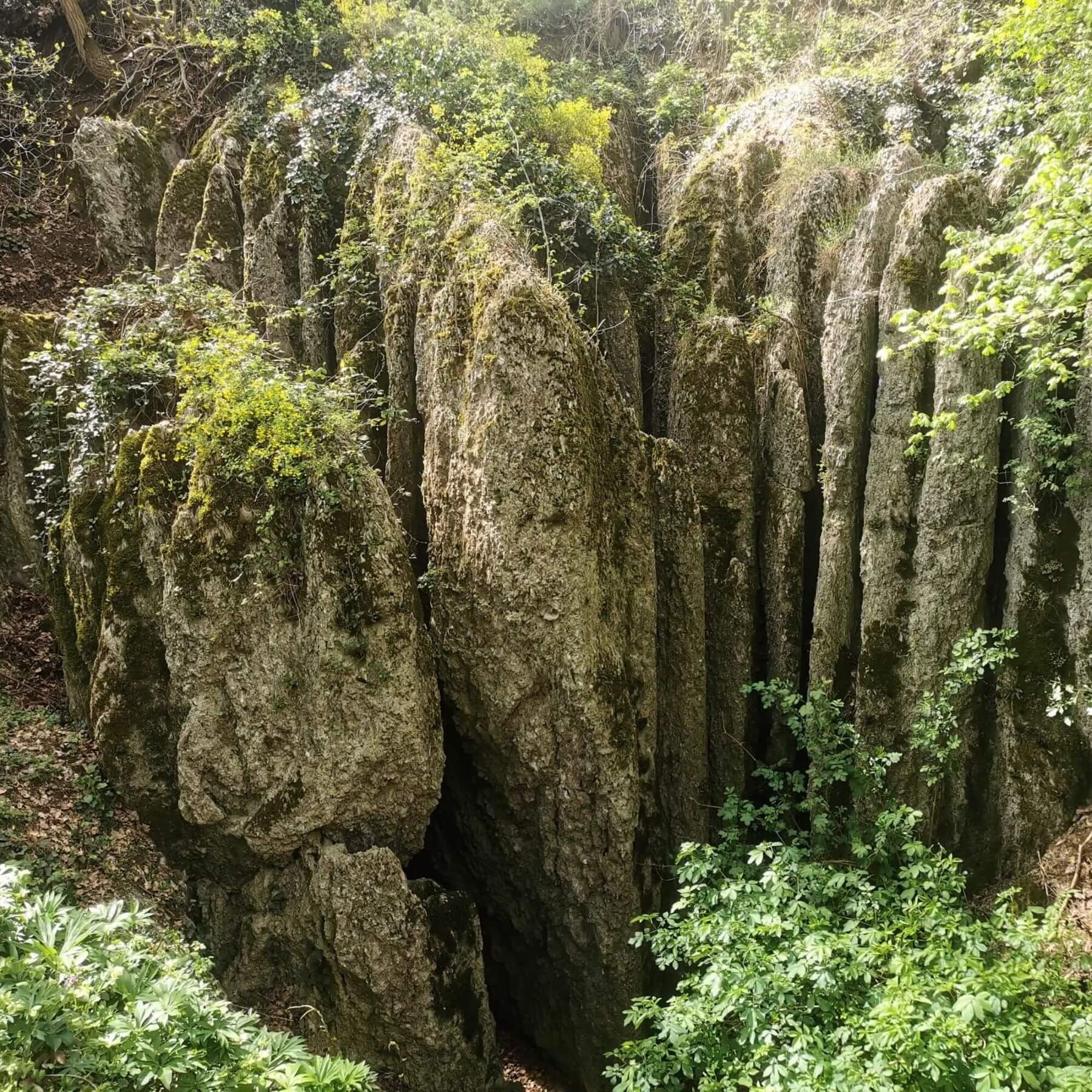Grotta Buco delle Candele. Croara, San Lazzaro di Savena, Bologna